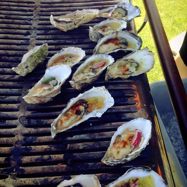 oysters bbq